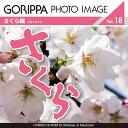 Pra gphoto018