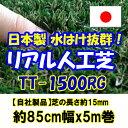 Imgrc0071405528