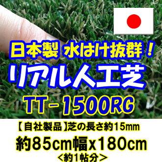 真正的人工草坪更严格 v TT-1500 DG (长草约 15 毫米) 关于 85cmx180cm (至少 1 张专辑)