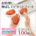 ポリオレフィン エコハンド手袋 100枚入★【ダンロップのポリオレフィン手袋】