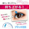 False eyelashes D up eyelash RICH 808 [D-UP D.U.P DUP]