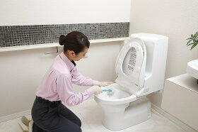 ハウスクリーニング|トイレ洗面所クリーニング)|全国|各1ヶ所|ダスキン
