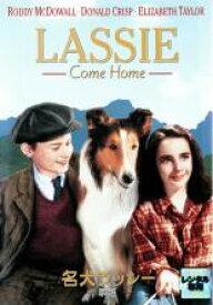 【バーゲンセール】【中古】DVD▼名犬ラッシー 家路▽レンタル落ち