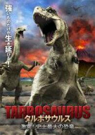 【バーゲンセール】【中古】DVD▼タルボサウルス 激突!史上最大の恐竜▽レンタル落ち