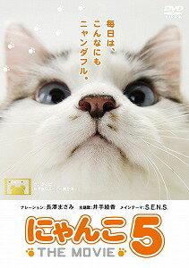 にゃんこ THE MOVIE 5【DVD/邦画動物|ドラマ】