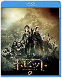 【アウトレット品】ホビット 竜に奪われた王国('13米/ニュージーランド)【Blu-ray/洋画ファンタジー|アドベンチャー】