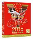 CARP2016熱き闘いの記録 V7記念特別版〜耐えて涙の優勝麗し〜〈2枚組〉【Blu-ray/スポーツ等】