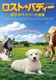 【中古】DVD▼ロスト・バディー 迷子のベイリー大冒険▽レンタル落ち