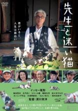 【バーゲン】【中古】DVD▼先生と迷い猫▽レンタル落ち