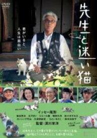 【バーゲンセール】【中古】DVD▼先生と迷い猫▽レンタル落ち