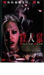 【中古】DVD▼殺人鼠 KILLER RATS▽レンタル落ち【ホラー】