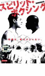 【中古】DVD▼スピリット ボクシング▽レンタル落ち