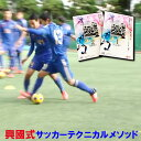 興國式サッカーテクニカルメソッド DVD 内野智章 興國高校 ジャパンライム