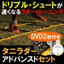 タニラダー【アドバンスドセット】解説DVDとテキスト付きトレーニングラダー【送料無料】