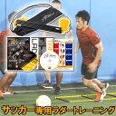 タニラダーアドバンスド シングルセット(サッカー版)DVDセット ラダートレーニング サッカー トレーニング