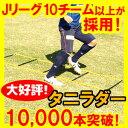 タニラダー【送料無料】解説DVDとテキスト付きトレーニングラダー