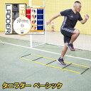 タニラダーベーシック シングルセット(サッカー版)DVDセット ラダートレーニング