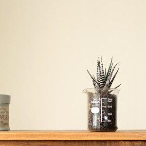 【おしゃれな植木鉢】置くだけで可愛い!インテリアとしても、鉢としても遊んで見たくなる♪高品質!国産のやわらかいフォルムに癒しをもらう。ビーカー200ml※植物は別売りです。