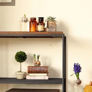 【生育がとてもゆっくりなので、流通が少ない希少品種】ディスキディア・エメラルドネックレスinスタイリッシュPOT×1※※鉢の色はお任せとなります。