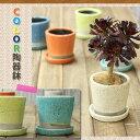 【植木鉢】貫入加工・ポップ&JUNK風 カラー陶器鉢 Mサイズ【植木鉢 3号〜3.5号ポット向け おしゃれ】