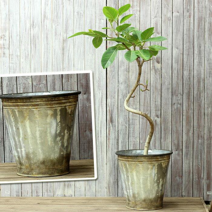 ブリキは陶器に比べ、お値打ちなんです!このサイズはあまりないですよ!アンティーク風ブリキ鉢※植物は商品には含まれません【大型 鉢カバー 植木鉢 35-060】