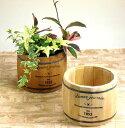 木製樽型プランターMサイズ【植木鉢 アンティーク 3078b ke】植木鉢