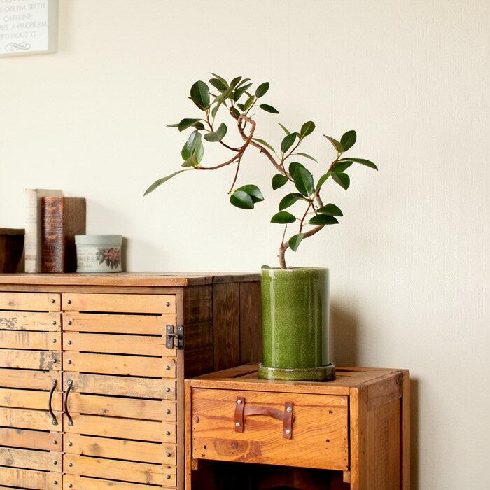 和洋共に馴染む,さりげない演出家落ち着いた色味。丸長シリンダー陶器鉢【直径12cm×高さ19cm】※植物は商品には含まれません