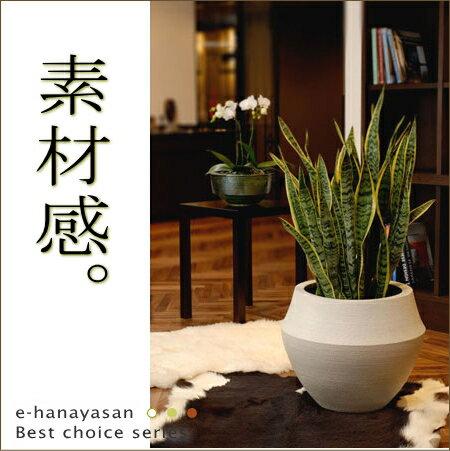 【送料無料(同梱不可)】信楽焼。マットな仕上がりが素敵な植木鉢カバー(10号鉢用)※植物は商品には含まれません。【植木鉢 陶器鉢 黒 白 鉢カバー 大型 陶器】
