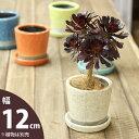 貫入加工カラー陶器鉢(12.5cm)