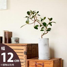 マットな質感、丸長トール植木鉢M(12cm)