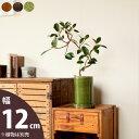 【おしゃれな植木鉢】丸長シリンダー陶器鉢(12cm)【和洋共に馴染む】