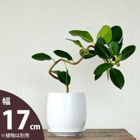 【おしゃれな植木鉢】人気の白マット!陶器鉢(17cm)