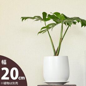 【おしゃれな植木鉢】人気の白マット!陶器鉢(20.5cm)