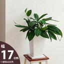 【おしゃれな植木鉢】縦長スクエア陶器鉢(17cm)cb27