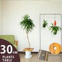 これ、お勧め!部屋に観葉植物がある人は、是非お試し下さい。置き場所を有効に使う。見た目も素敵。木の風合いがお洒…