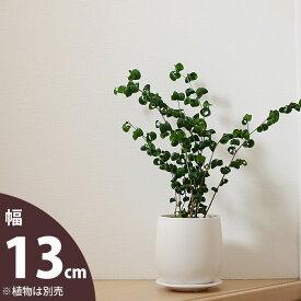 【おしゃれな植木鉢】人気の白マット!陶器鉢(13cm)