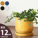 【おしゃれな植木鉢】どんな植物にも合いやすい!シンプル&キュートな陶器鉢(12cm)