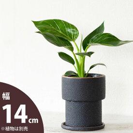 【おしゃれな植木鉢】ザラっとした質感。渋カワ陶器鉢(12.5cm)