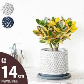 【おしゃれな植木鉢】ツヤ感、模様もGoodな陶器鉢(14cm)