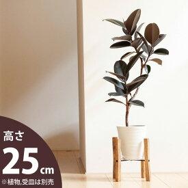 シンプルisベストな、木製スタンド(小)(幅25cm)