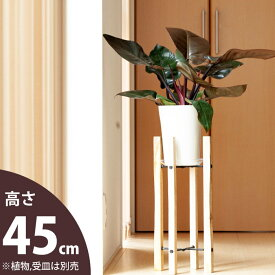 シンプルisベストな、木製スタンド(大)(幅21cm)