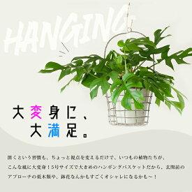 ハンギングPOTカバー大(20cm)