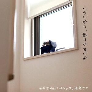「多肉植物の教科書」付き!癒される、育てる、猫ちゃん寄せ植え