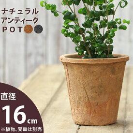 モスポット植木鉢(径16cm/高さ14.5cm)