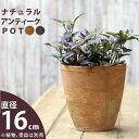 【おしゃれな植木鉢】モスポット:トールtype(径16.5cm/高さ17.5cm)