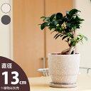 【おしゃれな植木鉢】ちょっと異国情緒。植物の魅力を際立たせる陶器鉢・ぽっこりtype(13cm)