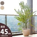 【おしゃれな植木鉢 大型】とにかく丈夫で、デザインgood!セラミックポット(10号サイズ/45cm)鉢カバーとしても!…