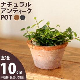 【おしゃれな植木鉢】モスポット浅鉢(10cm/高さ6cm)