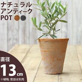モスポット植木鉢(径13cm/高さ15cm)