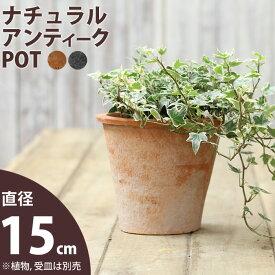 モスポット植木鉢(径15cm/高さ14cm)